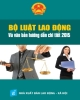 sách bộ luật lao động song ngữ anh việt năm 2015 mới nhất